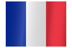 Flag waving xs france